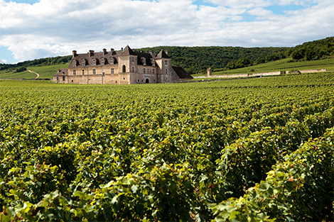 BLOG-4_Post-photo_02-min Najpoznatije vinske regije sveta