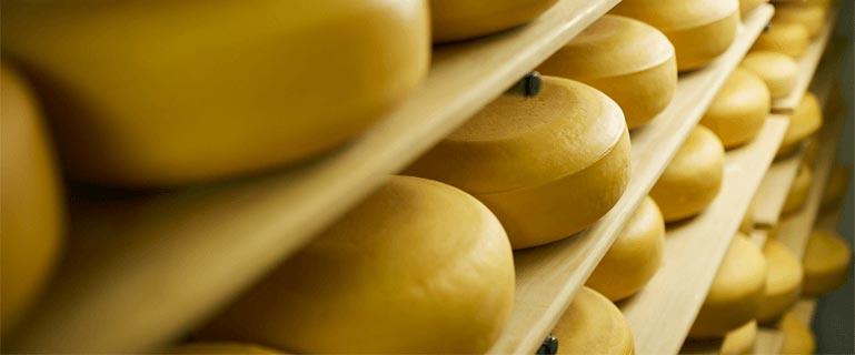 5-senses-blog-Belgrader-Zasto-stariji-sirevi-pruzaju-tako-jedinstveno-iskustvo-ukusa-769x320-1 Zašto stariji sirevi pružaju tako jedinstveno iskustvo ukusa?